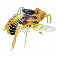 Skládačky - Ptáci a hmyz