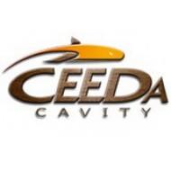 Ceeda Cavity