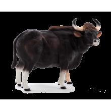 Mojo Animal Planet Gaur býk