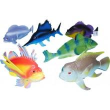 Ryba tropická